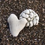Coração e cérebro: ligações fortes e úteis