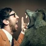 Neurociência dos conflitos: nosso lado animalesco