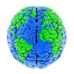 Neurorecursos: por uma preparação inteligente